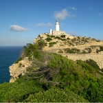 learn Mallorcan for travellers