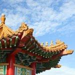 učenje šangajskog