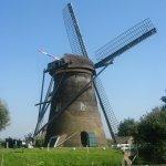 mokytis nyderlandų