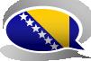 Bosnian language after 1991