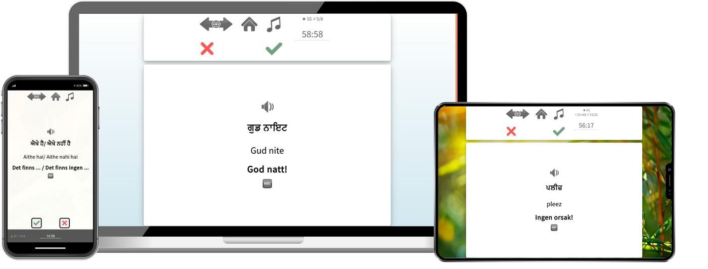 Lär dig punjabi online
