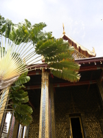 lingua thailandese