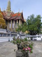 Den thailändska skriften